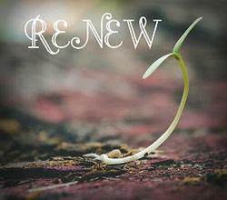 renew-1.jpg