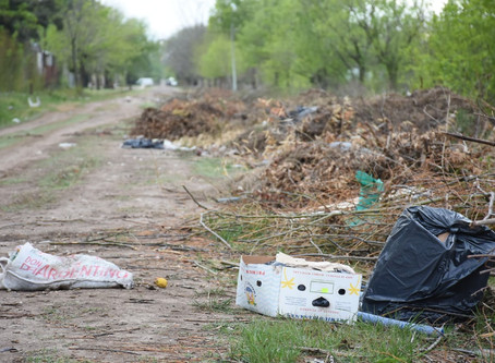 Nueva ordenanza: arrojo de basura en la vía pública