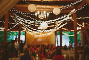 Barn at the meadows, corporate parties, corporate events, corporate gatherig, corporate venue