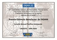 Diploma Caucete 2019.png