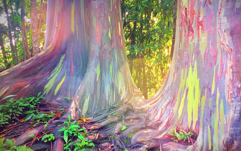 Mythical Trees