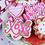 Thumbnail: Assorted 1/2 Dozen - Valentine's