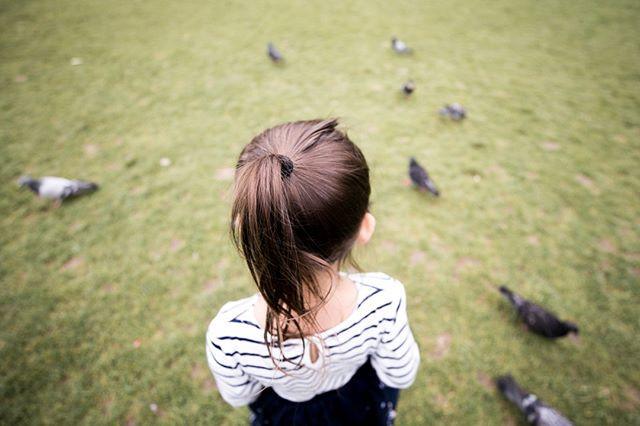 bird feeding.⠀⠀⠀⠀⠀⠀⠀⠀⠀__line up birds!_⠀