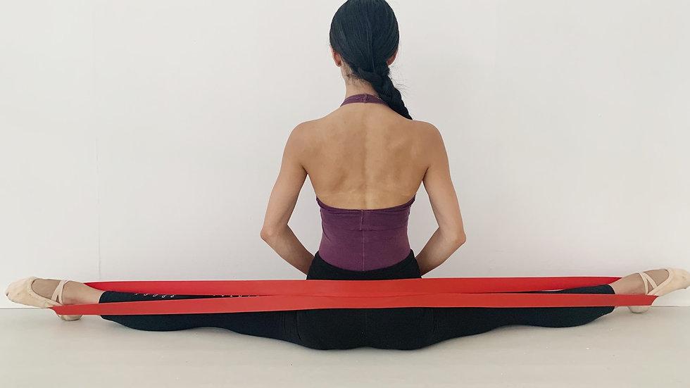 Stretching Band