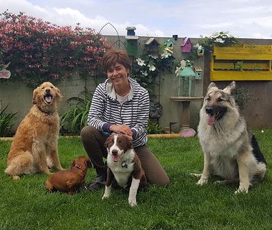 Richmond Dog Trainer Shelley Smith House Training