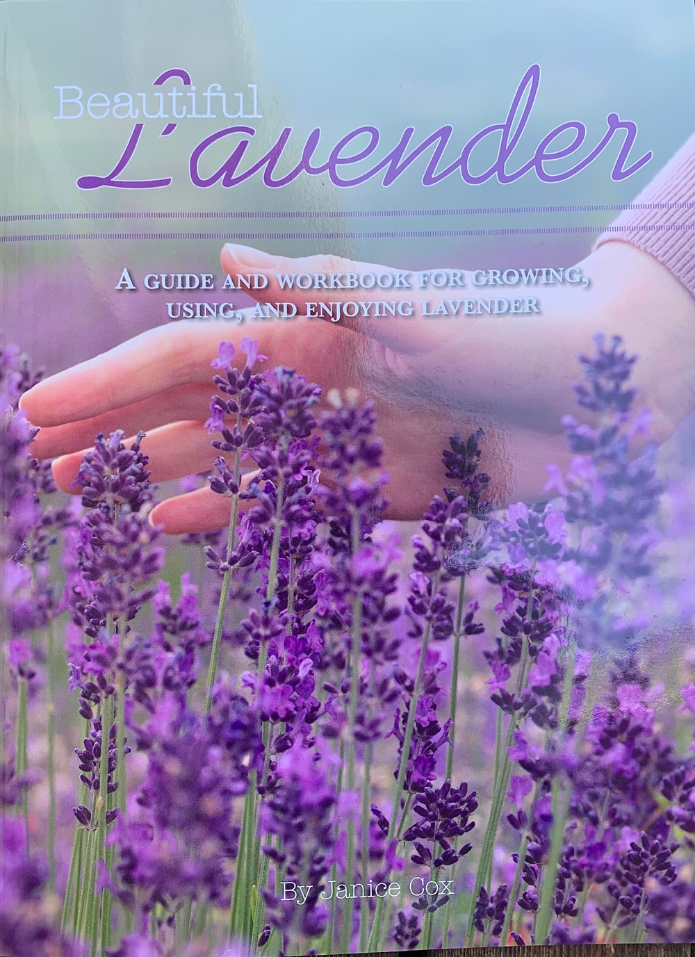 Cover of beautiful lavender book by Janice Cox