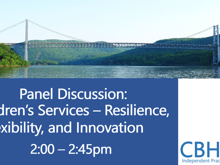 8-Panel Discussion - Children's Services - Resilience, Flexibility, and Innovation