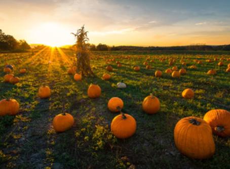 CBHS October Newsletter