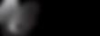 Cesario logo.png