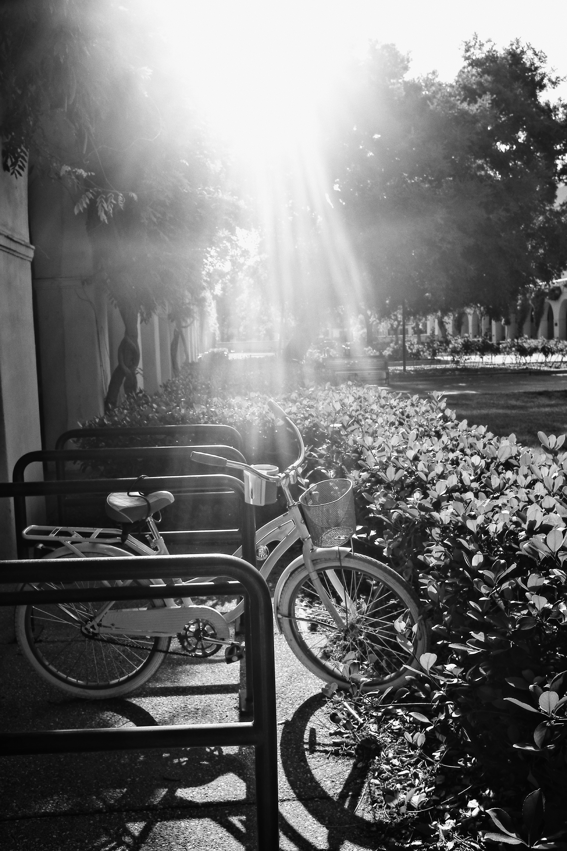 Pasadena, California '17