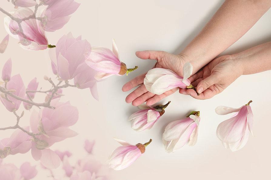加工magnoliaヘッド画像.jpg