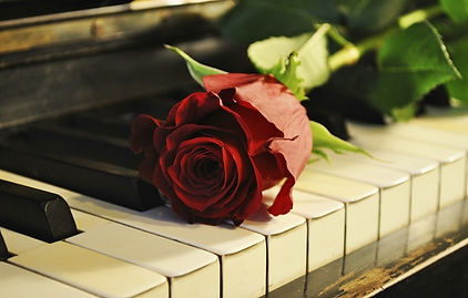 A beautiful red rose laying on an old piano keyboard.