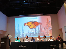 ¿ Tú sabes que existe Más Allá de la Mariposa  Monarca ?