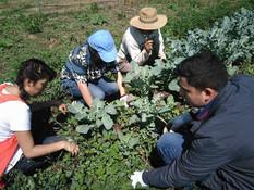 ¿Día mundial del medio ambiente?                  Educación de todos