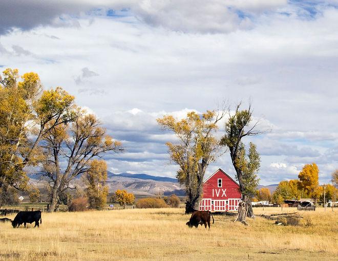 Better Red Barn.jpg