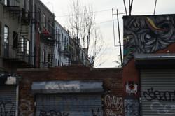Bushwick,NY_8