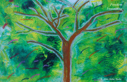 26_alma_mater_art_studio_freedom_tree