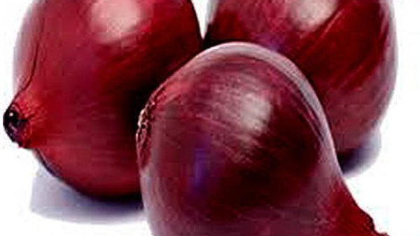 ONION(AGRI FOUND DARK RED)