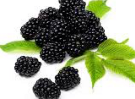 Blackberry Wine- the fruit, the wine, the food