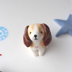 Custom Beagle Pup