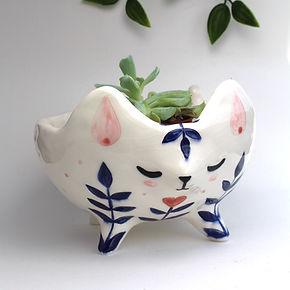 gato pot6.jpg
