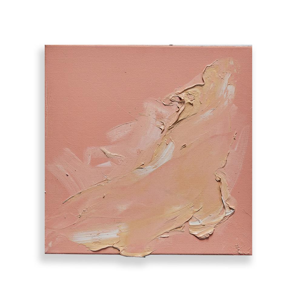 "From the Series Entitled ""Sun Tracks"": Desert Wildflower I"