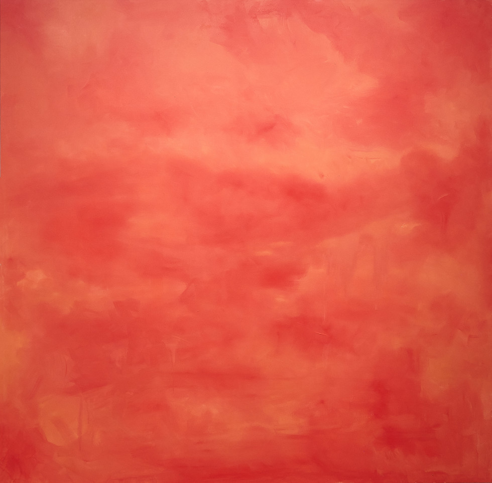 """From the Series Entitled """"LAND"""": Canyon Sun"""