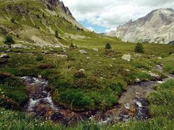 Montagne ruisseau