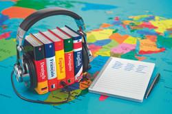 Livres de langues
