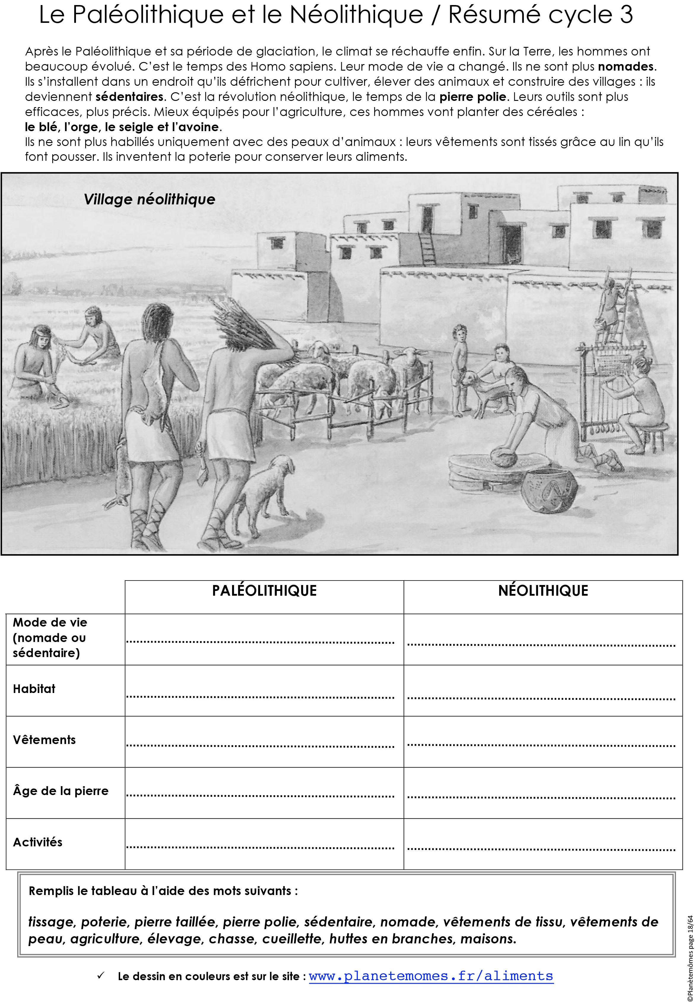fp_18_le_Paléolithique_et_le_Néolithique_résumé_cycle_3