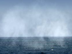 Evaporation mer