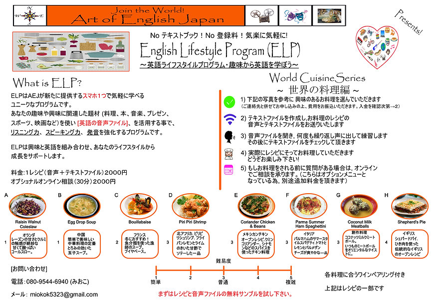 Lifestyle Program Flyer Japanese3.jpg