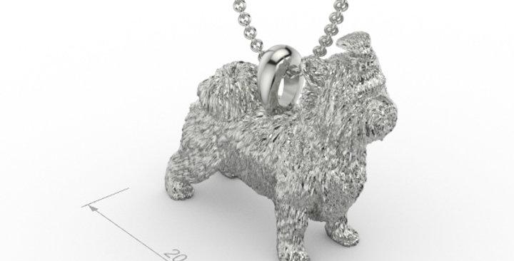 Briewer Yorkshire Terrier