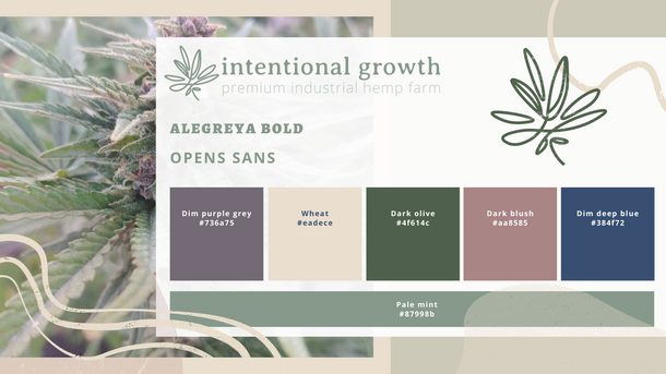 Intentional Growth Branding Guide.png