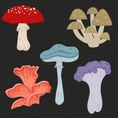 Hemp Folk Mushrooms.png