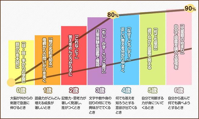 脳細胞発達グラフ.jpg