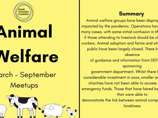 Animal Welfare Meetup - March - September Summary