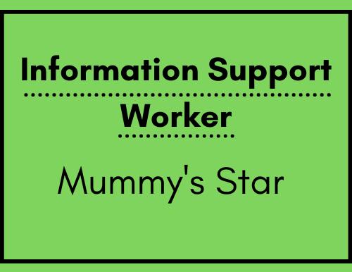 Information Support Worker