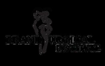 transparent logo.png