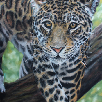 3. SILVER Sophie Parkhill The Jaguar Soft Pastel.JPG