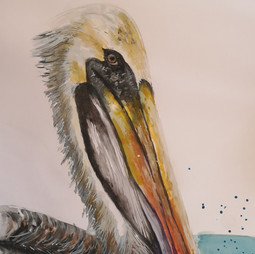 Pamela_LodigianiPelican Watercolor.jpg
