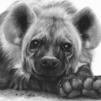 3. SILVER Danguole Serstinskaja Adorable_Hyena Oil.jpg