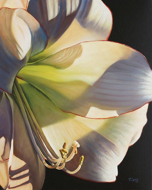 Picotee Flower.jpg
