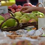 apples-for-banner.jpg
