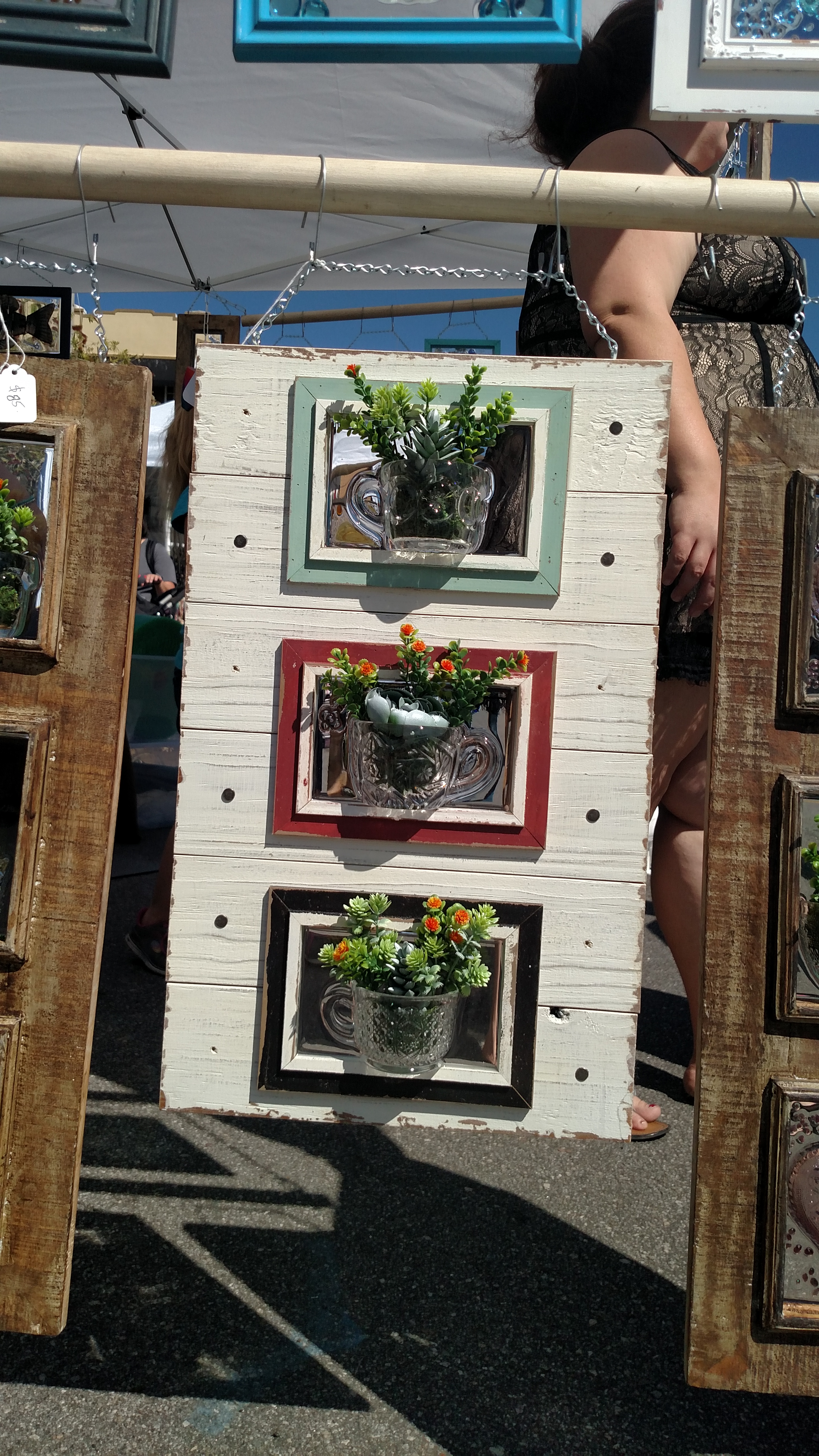 Coastal Frame with Cups & Succulents