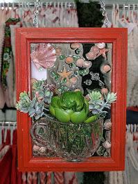 5x7 Shells & Succulents