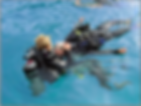 Divers doing rescue training