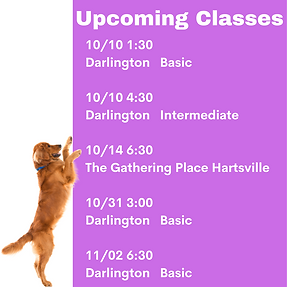 Copy of Copy of Upcoming Classes.png