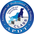 APDT class_logo_rev_med.png
