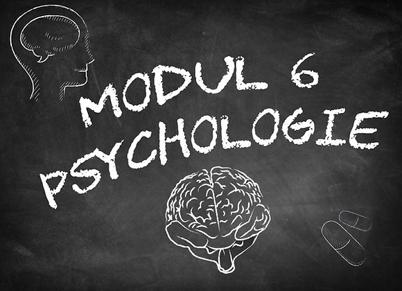 Modul 6 Psychologie